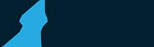 Strivve Color Logo